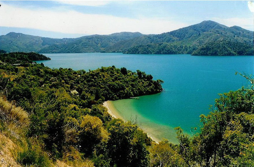 Marlborough Sounds New Zealand  city photos : Marlborough Sounds